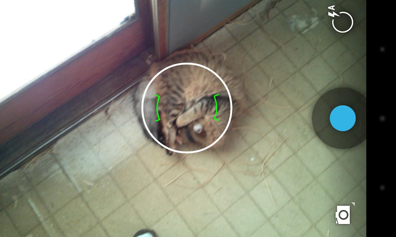 Android camera focus area