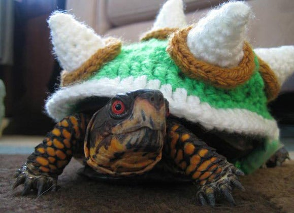 Knitted Shell Sweater Turns Your Turtle Friend Into Super Marios