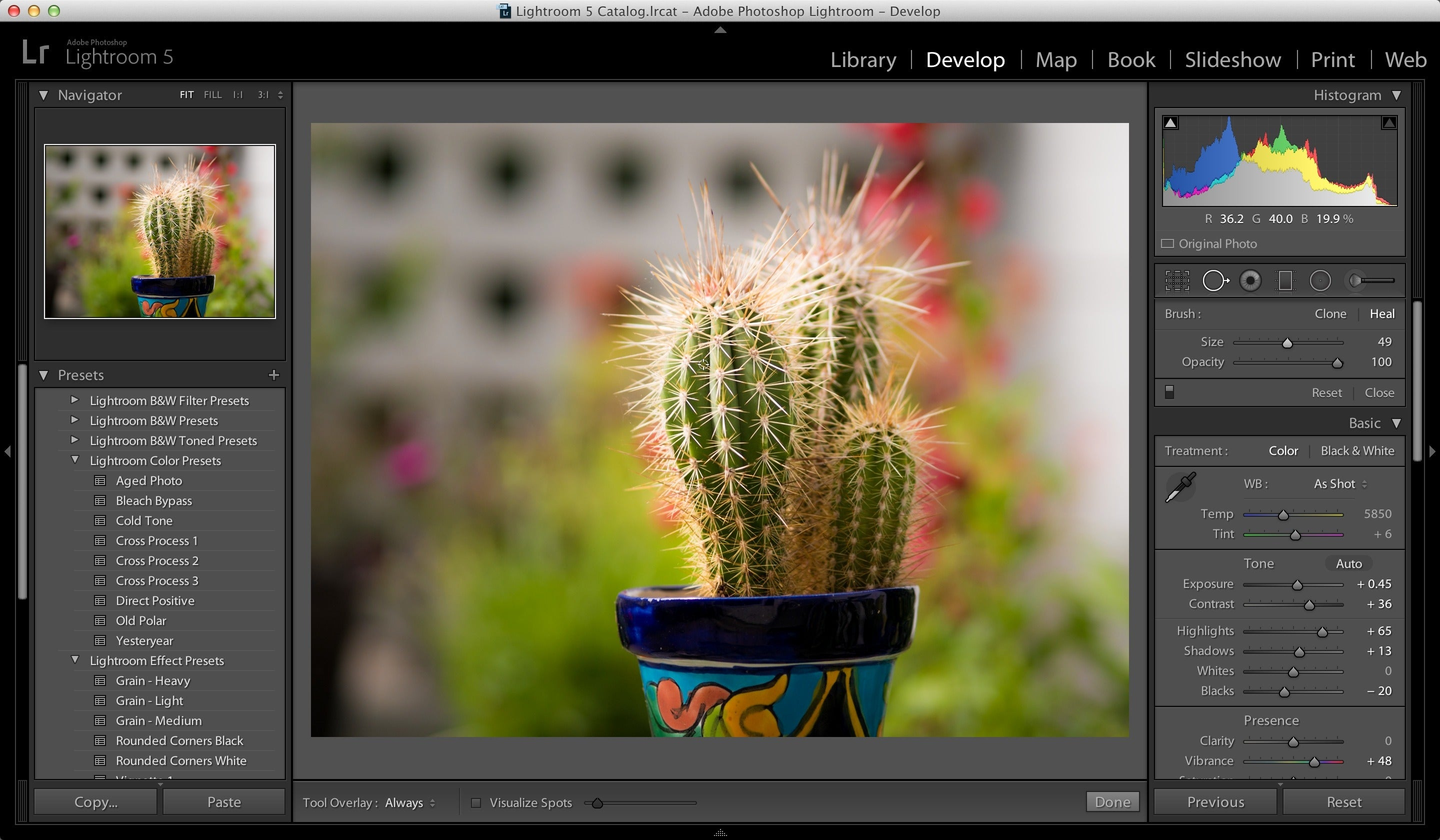 adobe photoshop lightroom 5 serial number