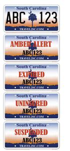 South Carolina Plates