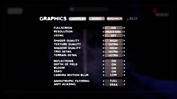 Slender: The Arrival graphics settings