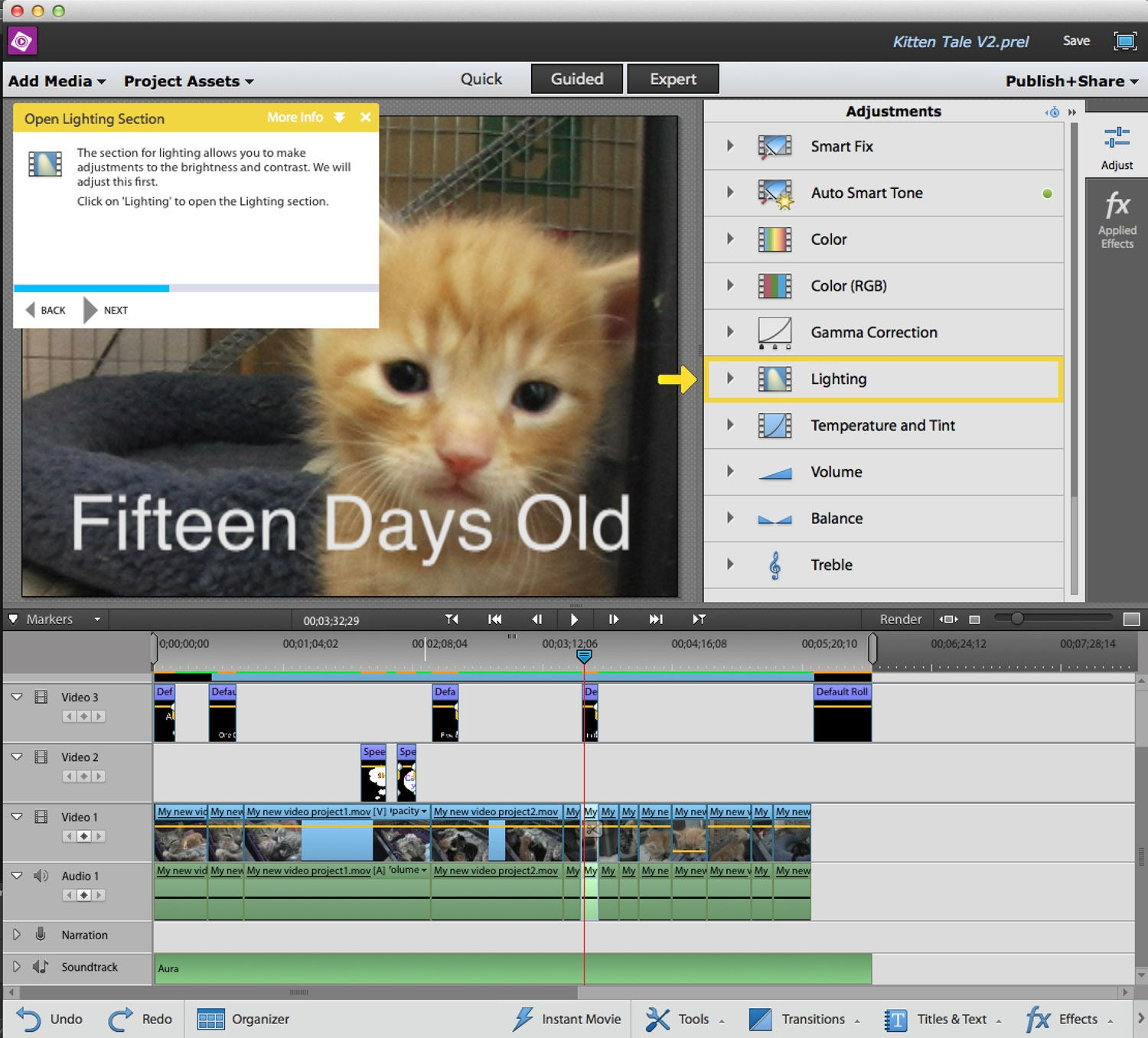 how to add video clips without audio on premiere pro