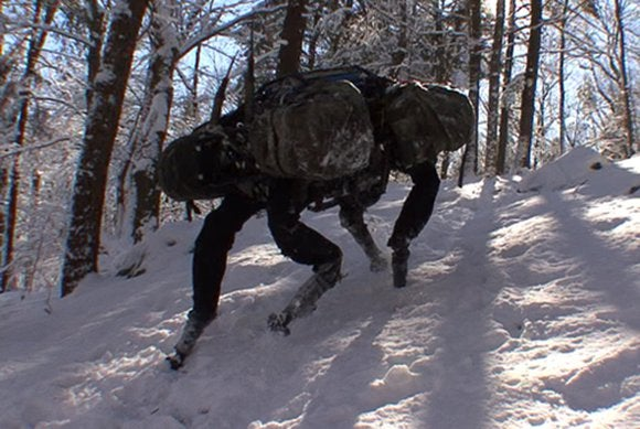 boston dynamics big dog