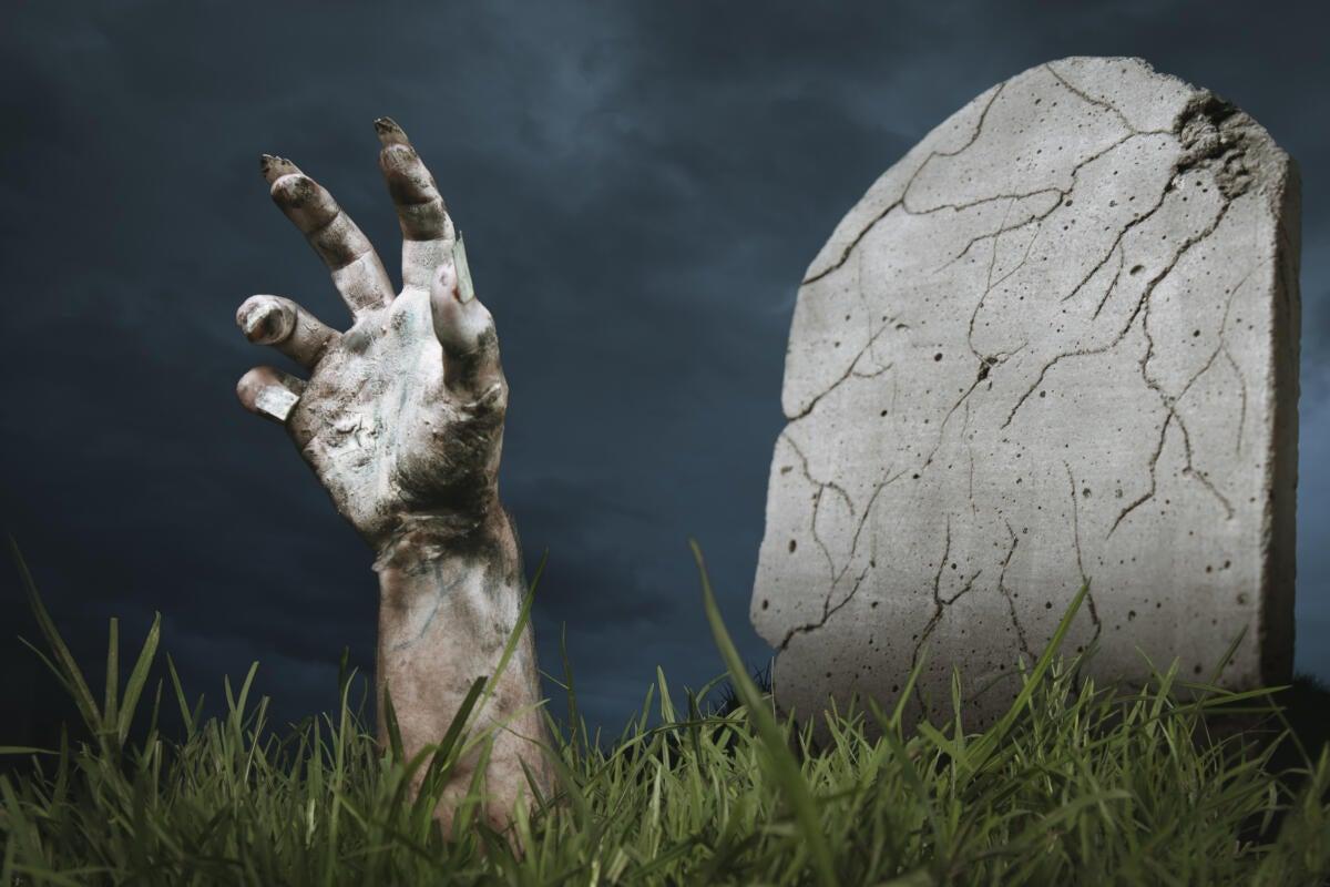 Python for  Net rises from the dead | InfoWorld