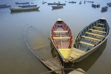 Digital health innovation: Addressing the two-canoe problem