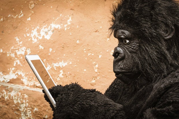 The IoT market is unlikely to create a gorilla