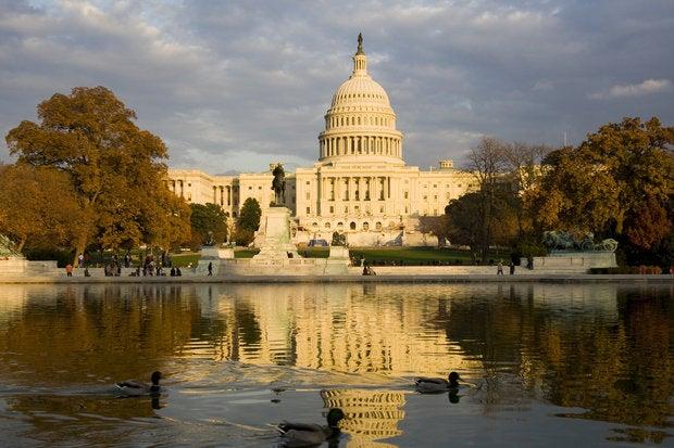 Capitol building, Washington D.C.    91632044