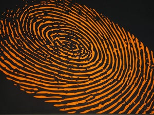 orange fingerprint