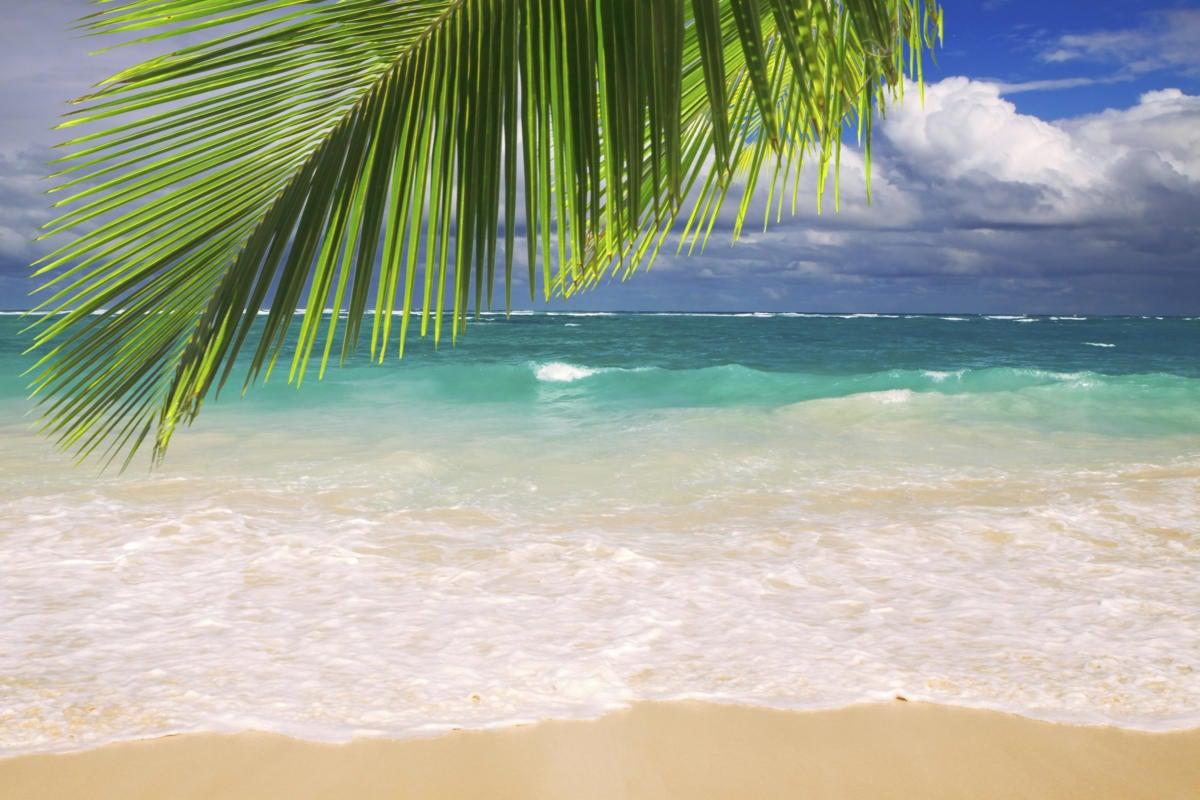 beautiful tropical beach with clear ocean . 166668700