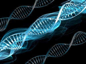 Build digital DNA: Leveraging M&A to reshape the IT workforce