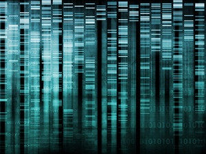 Python is devouring data science