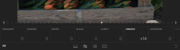 lrm edit controls