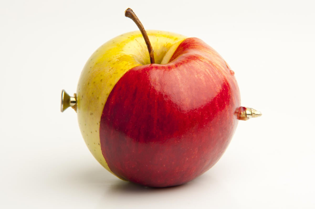 spliced together two different apples 135925055 100265641 large.'