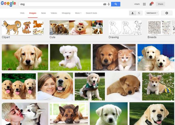dog google