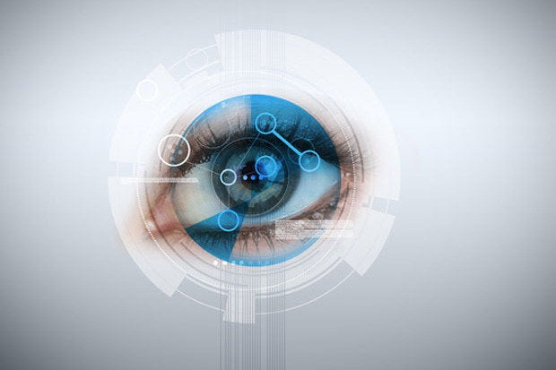 security eye biometric
