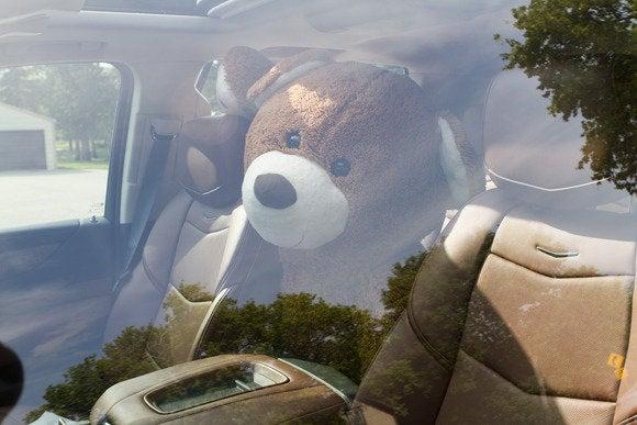 2015 cadillac escalade bear intruder 3