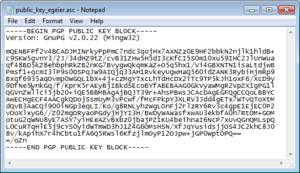 pgp public key raw