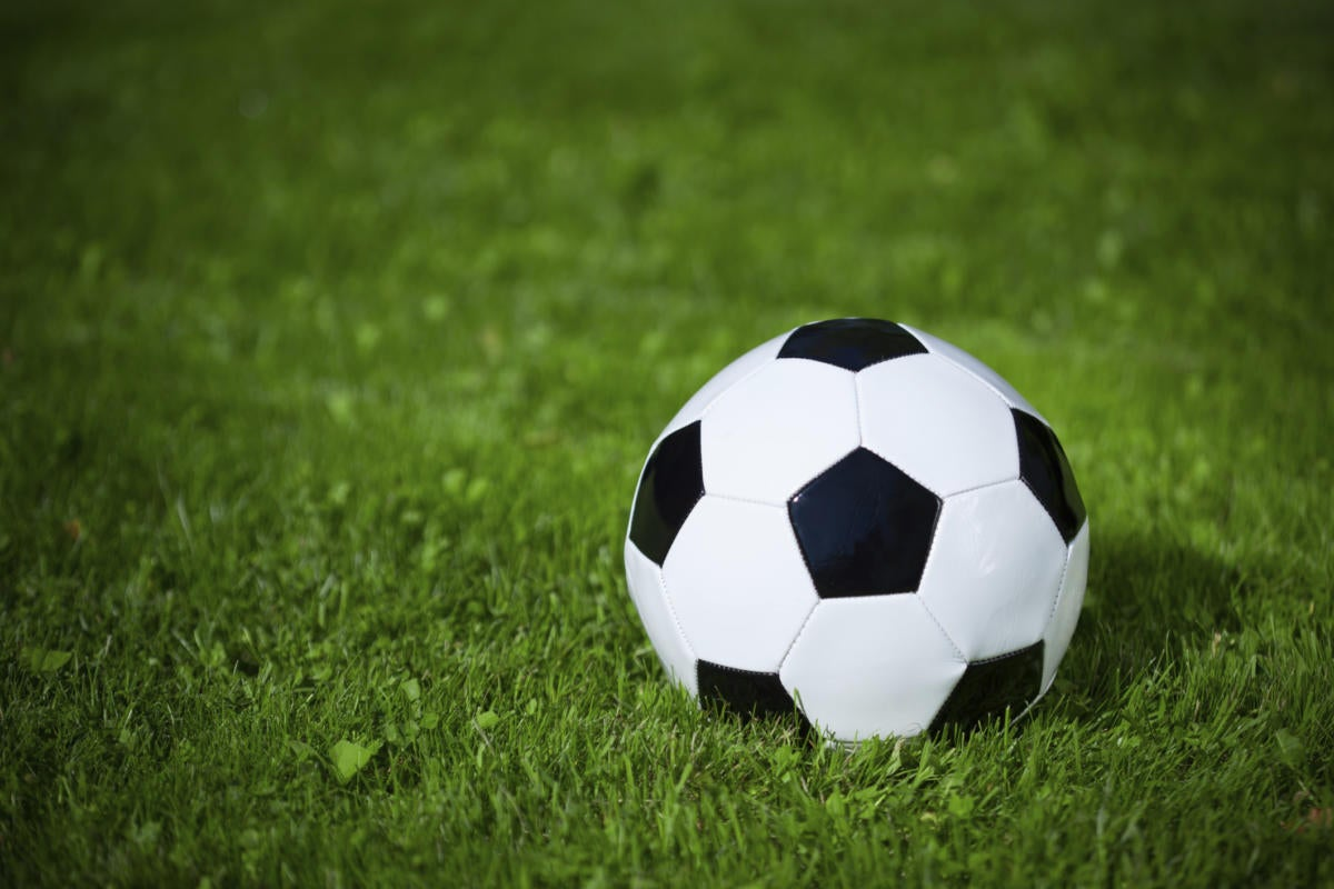 Soccer ball sitting in the grass