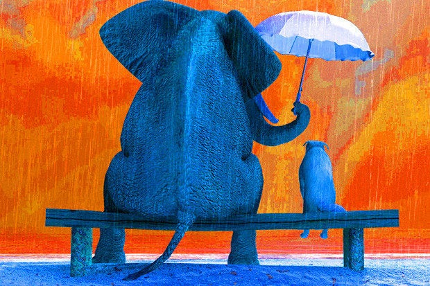 Hadoop project ODP regroups under Linux Foundation's umbrella