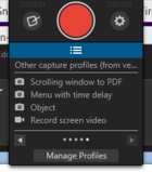snagit capture profiles