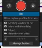 snagit capture profiles