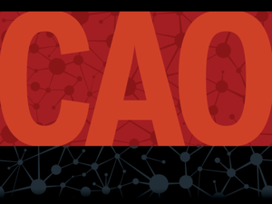 Slideshow: 6 Key Attributes of CAOs [Chief Analytics Officers]