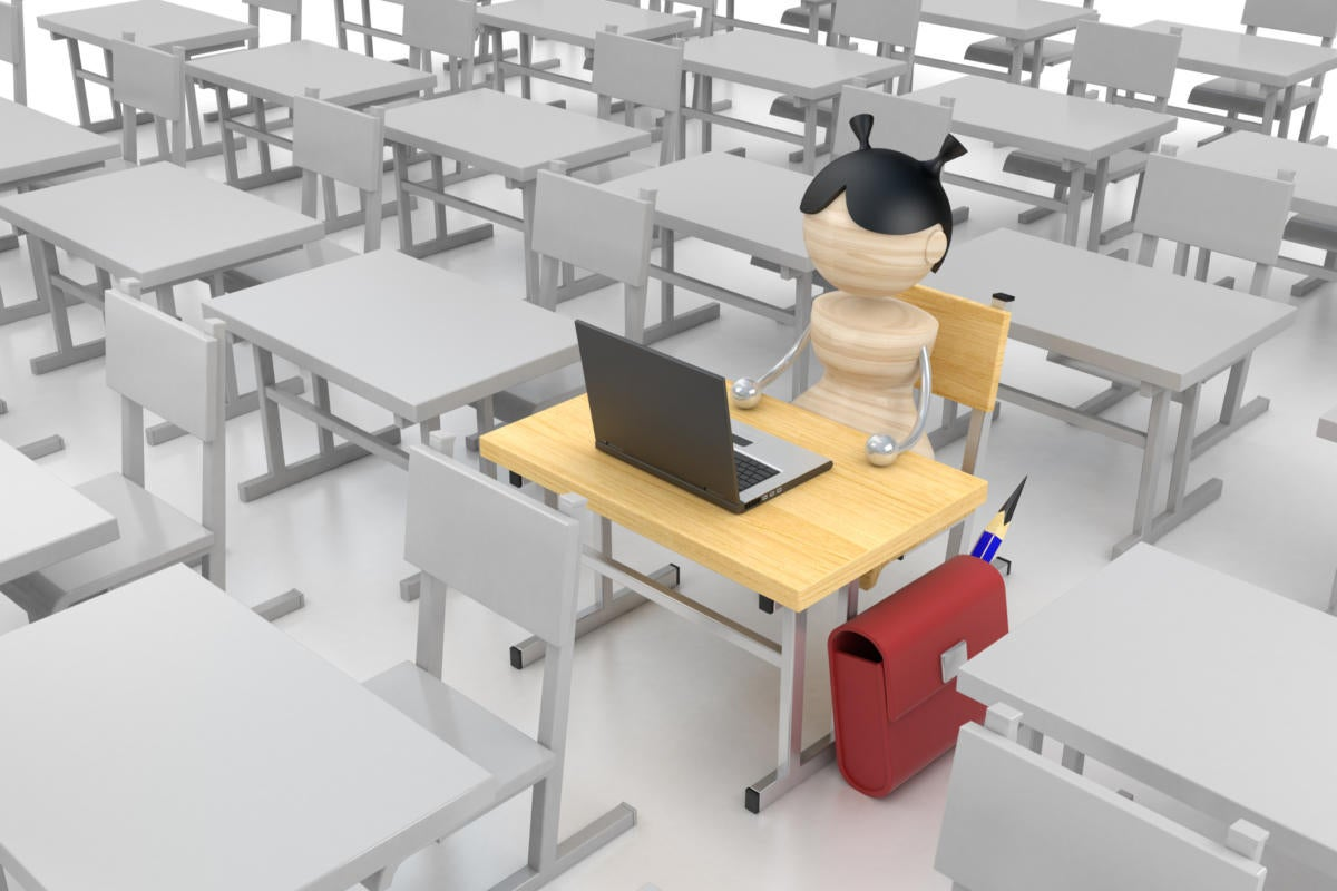 STEM skills and female information technology (IT) professionals