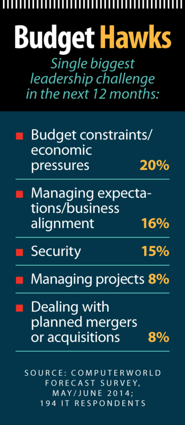 Computerworld Forecast 2015: Budget Hawks [chart]
