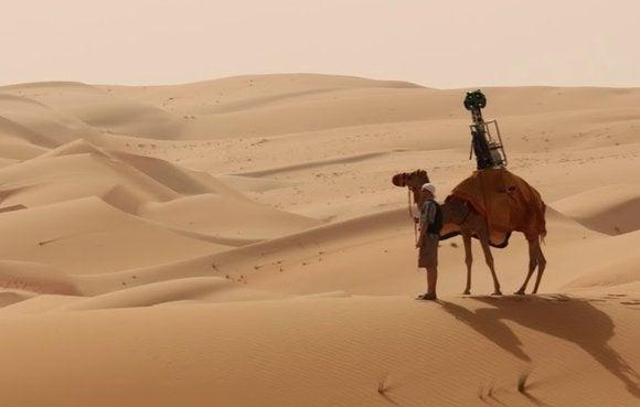 street view camel