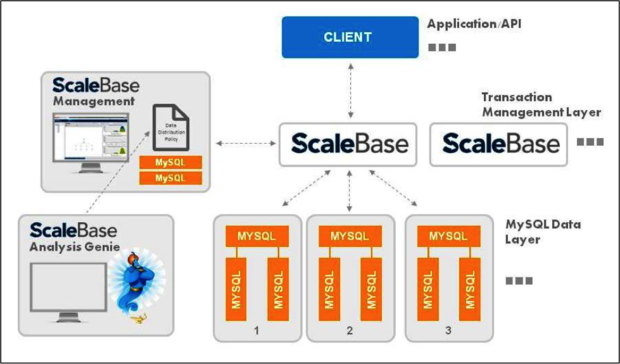 Scalebase architecture