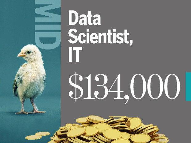 data scientist mid level