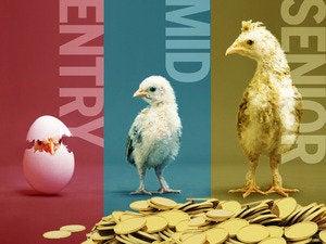 stages it career salaries