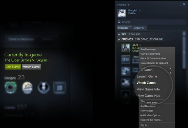 Steam Broadcasting watch game