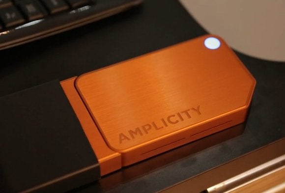 amplicity primary
