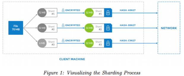 Storj's file sharing process