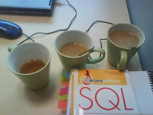 A SQL book next to three mugs of tea.