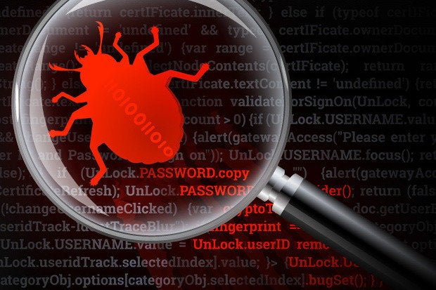 malware bug virus security magnifying glass detection