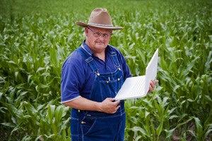 Farmer using computer 96681919