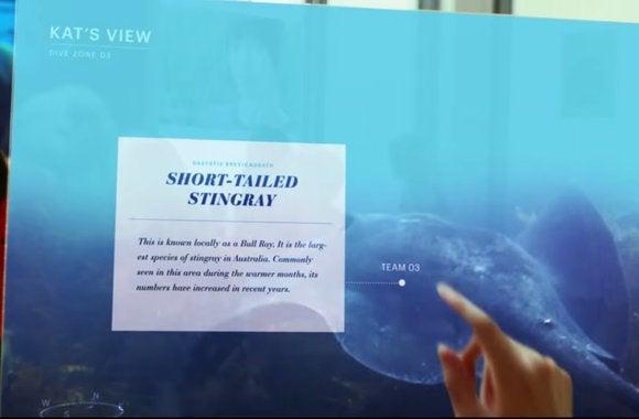 microsoft vision classroom display