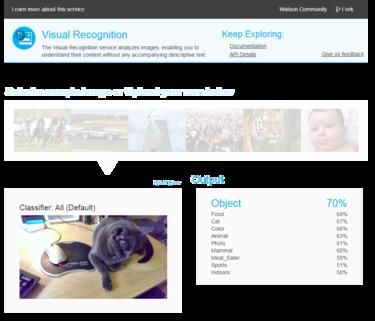 IBM Watson Visual Recognition Service