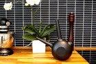 Freiya smart watering can