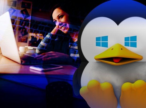 linux windows laptop user