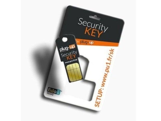 plug up security key 2