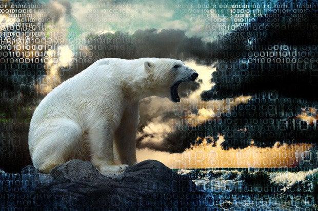 polar bear cloud