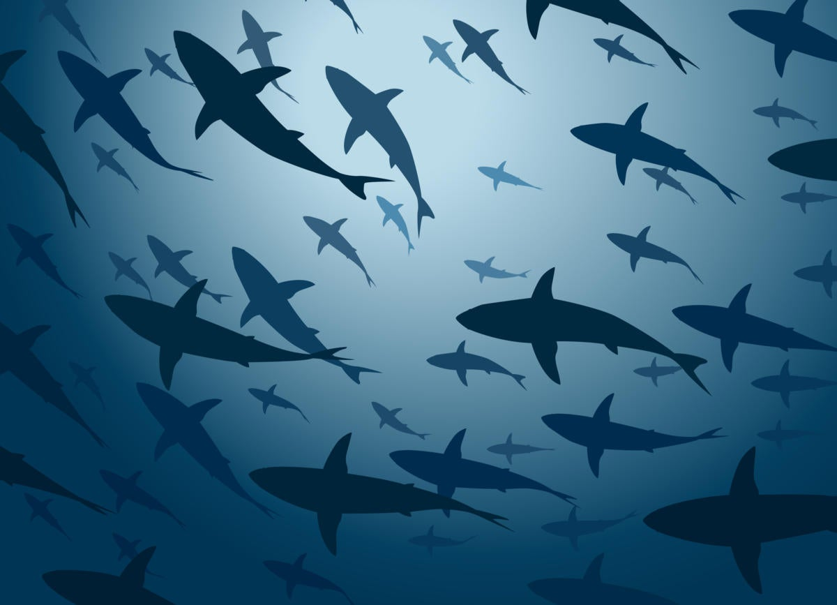 Jaws takes a bite out of AWS Lambda app deployment
