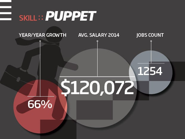 Puppet skills - big data