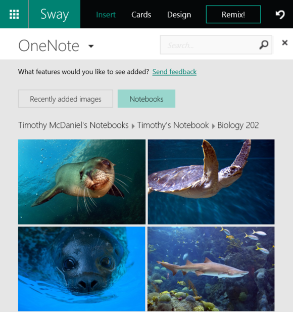 sway image onenote notebooks