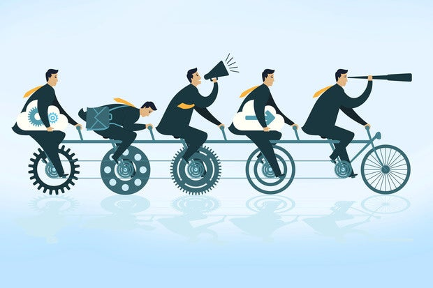 What is a project manager? The lead role for project success