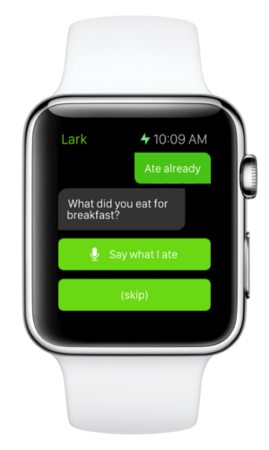 lark apple watch