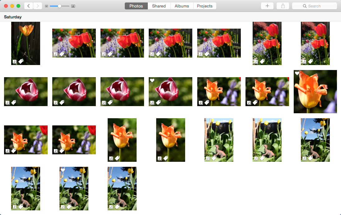 Review: Photos for OS X is faster than iPhoto but less